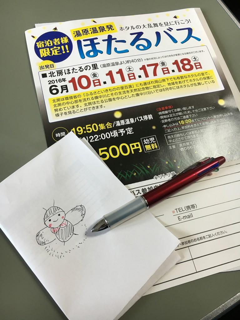 IMG_5982