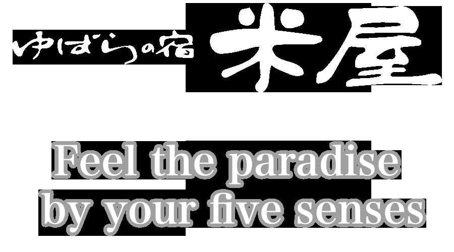 Japanese style inn